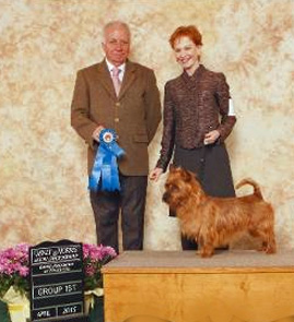 tiny terrier wins group 1